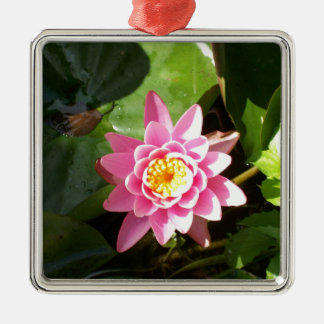 Pink Waterlily Christmas Tree Ornament