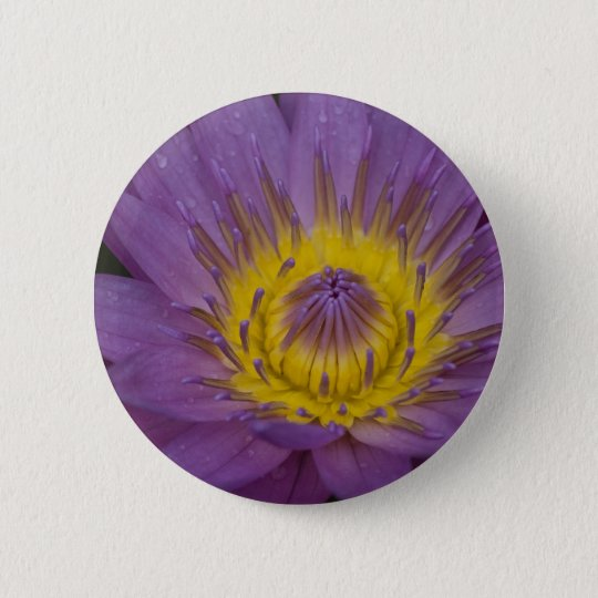 Pink Waterlily Pinback Button