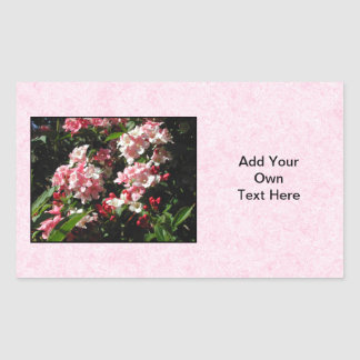 Pink Weigela Flowers. On pink. Rectangular Sticker