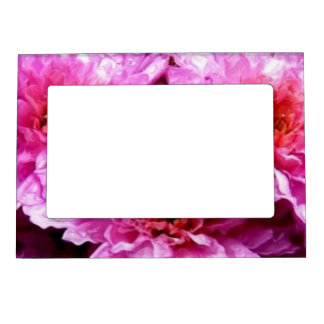 pink wet flowers picture frame magnets