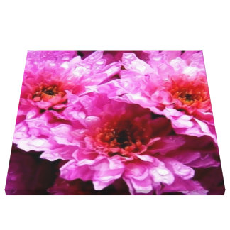 pink wet flowers stretched canvas prints