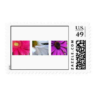Pink, White and Purple Postage Stamps