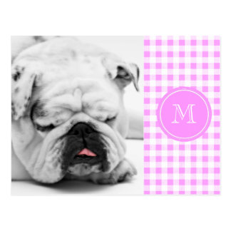 Pink White Gingham Pattern, Your Monogram Postcard