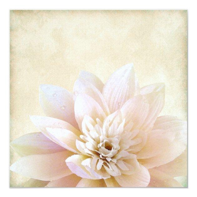 pink white lotus flower wedding card zazzle