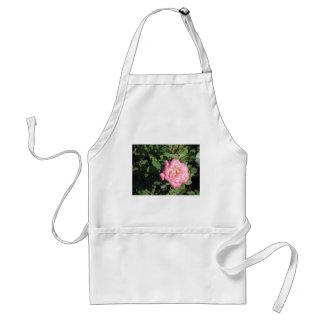 Pink White Rose Adult Apron