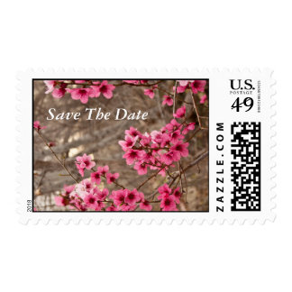 Pink Wild Azalea Blossoms Stamps