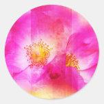 Pink wild rose, digital painting round sticker