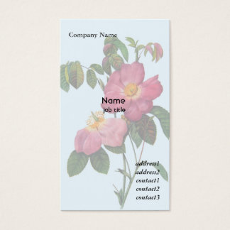 Pink wild rose  flower, Pierre Joseph Redouté Business Card
