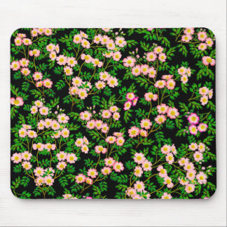 Pink Wild Rose Flowers Mousepad