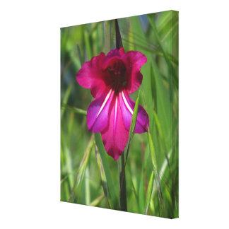 Pink WildFlower Canvas Print