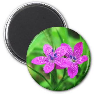 Pink wildflower magnet