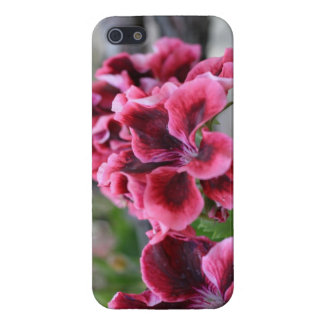 Pink Wildflower Nature Photo Case for iPhone 5.