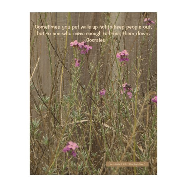 Pink Wildflowers Against Fence (Socrates Quote) Wood Print