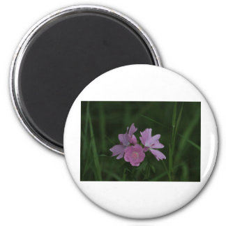 Pink Wildflowers amongst the grass 2 Inch Round Magnet