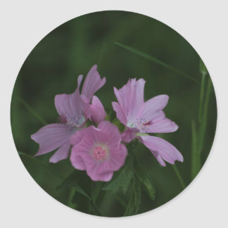 Pink Wildflowers amongst the grass Classic Round Sticker
