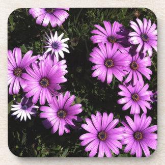 Pink Wildflowers Beverage Coasters