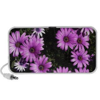 Pink Wildflowers iPod Speaker