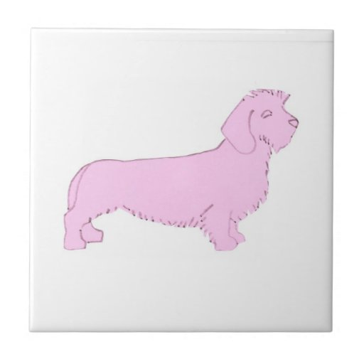Pink Wire Haired Dachshund Tile