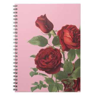 Pink With Cluster of Deep Red Roses Notebook