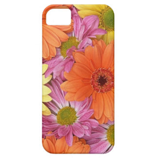 pink, yellow and orange Gerbera daisies iPhone SE/5/5s Case