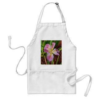 Pink-Yellow Beardless Iris Adult Apron