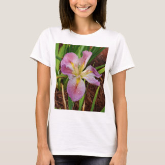 Pink-Yellow Beardless Iris T-Shirt