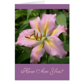 """""""PINK&YELLOW DAY LILY/HOW ARE YOU?"""" CARD"""