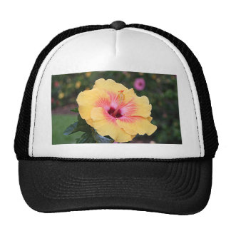 Pink & yellow hibiscus flower trucker hat