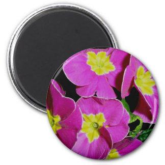 Pink Yellow Primrose Magnet