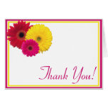Pink Yellow Red Gerbera Daisy Thank You Stationery Note Card