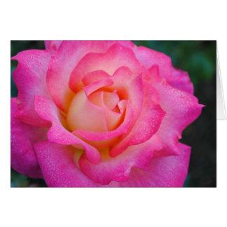 Pink & Yellow Rose Greeting Card