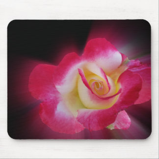 pink yellow rose mouse pad
