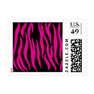 Pink Zebra Postage Stamps