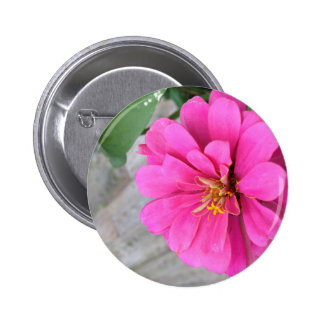 Pink Zinnia Pin