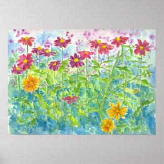 Pink Zinnia Daisy Garden Watercolor Flowers Poster