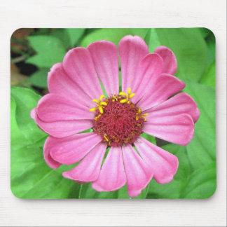 Pink Zinnia Garden flower Mouse Pad