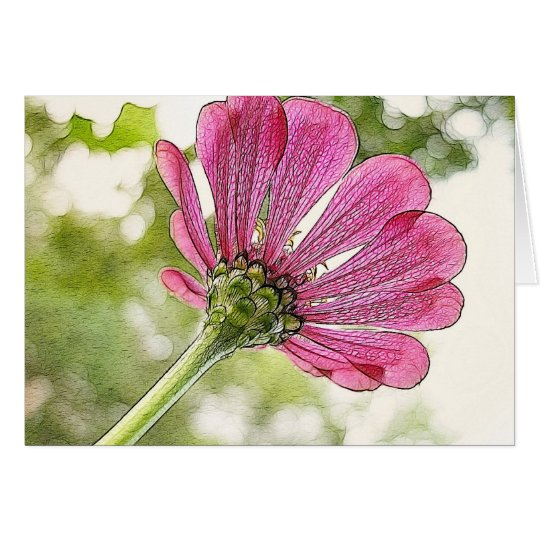 Pink Zinnia reaching for the sky Card