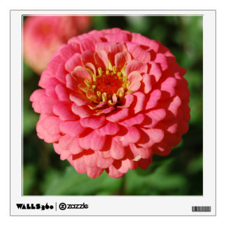 Pink Zinnia Wall Decal