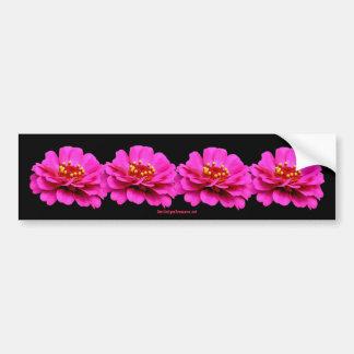 Pink Zinnias Flower Photo Bumper Sticker