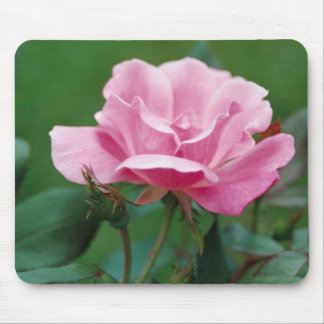 PinkFlower Mouse Pad