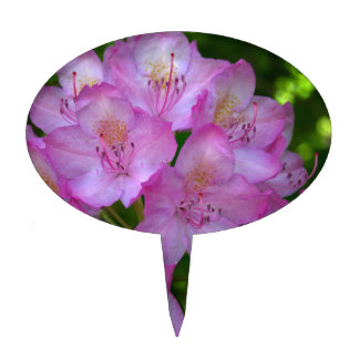 Pinkish purple Rhododendron Catawbiense Cake Topper