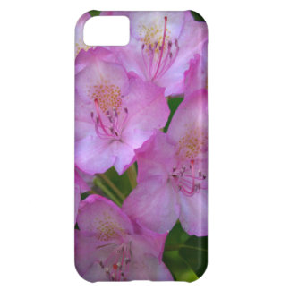 Pinkish purple Rhododendron Catawbiense iPhone 5C Case