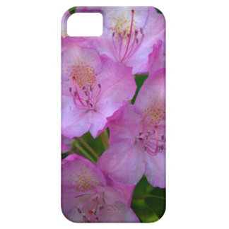 Pinkish purple Rhododendron Catawbiense iPhone SE/5/5s Case