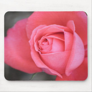 Pinkish Rose Mouse Pad