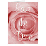 Pinkish Save the Date Greeting Cards