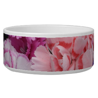 Pinks carnations in teacup bowl
