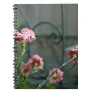 Pinks growing in a Cotswold Garden Notebook