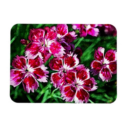 Pinks - Little Red Pink and White Flowers Flexible Magnets