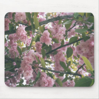 pinkspringtrees 001 mouse pad