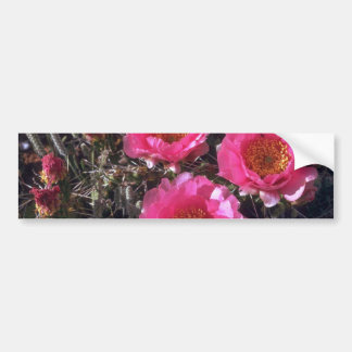 Pinky Flowers Bumper Stickers